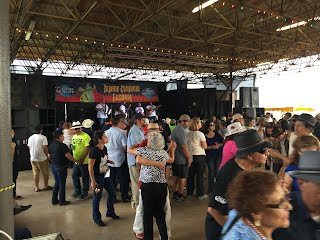 Crowd at Rosedale Park for the 2015 Tejano Conjunto Festival in San Antonio, Texas